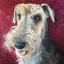Walter - Airedale Terrier