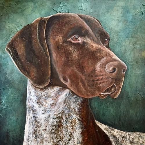 CJ - German Shorthaired Pointer