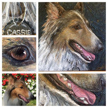 Cassie - Rough Collie