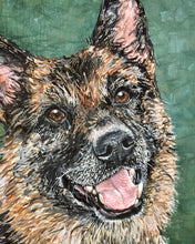 Will - German Shepherd