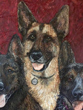 Multiple Pets - German Shepherd