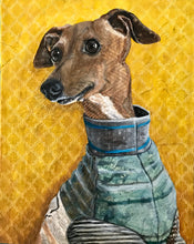 Moose - Italian Greyhound
