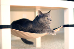 Cat Crib - Neutral