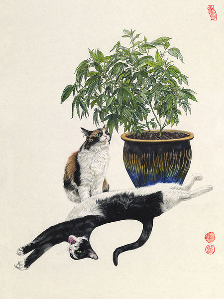 """Kitties and Kush"" Archival Limited Edition Print"