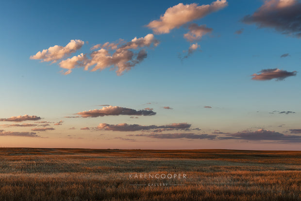 Elongated clouds stretched across a large blue sky striped with vibrant hues of orange and red. Below are a large scape of prairie grasses in green and bronze.