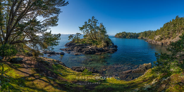 A small rocky island with tall green trees in the middle of the ocean, photo overlooking moss covered rocky rugged cliff on Vancouver Island