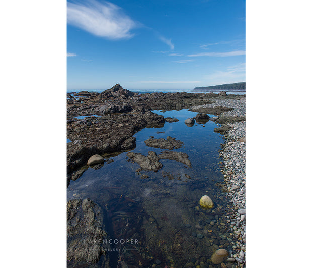 Rocks and tidal pools along rugged beach on Vancouver Island.