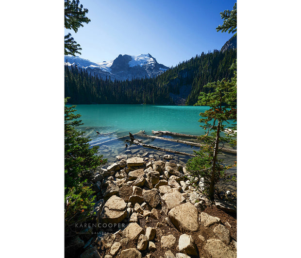 A rocky shoreline leading to driftwood covered turquoise waters, whose shores are dominated by tall hills of evergreen trees, overshadowed by the snow capped mountains near Pemberton. Clear, blue skies and the entire scene is brightened by the afternoon sunlight.