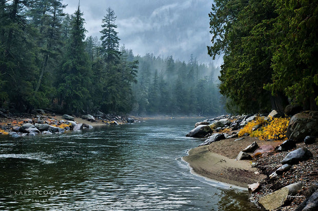 Still river with small, frequent ripples  on a misty day with rock-filled shorelines and dominated by lush, tall evergreen trees