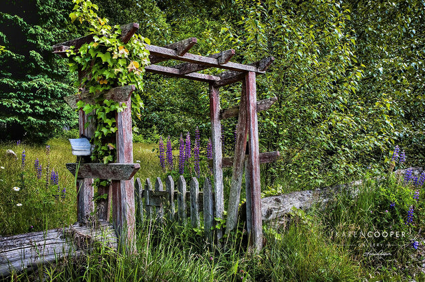 An overgrown, wooden gate leading into a meadow of purple and white wildflowers and a small canopy of lush trees.
