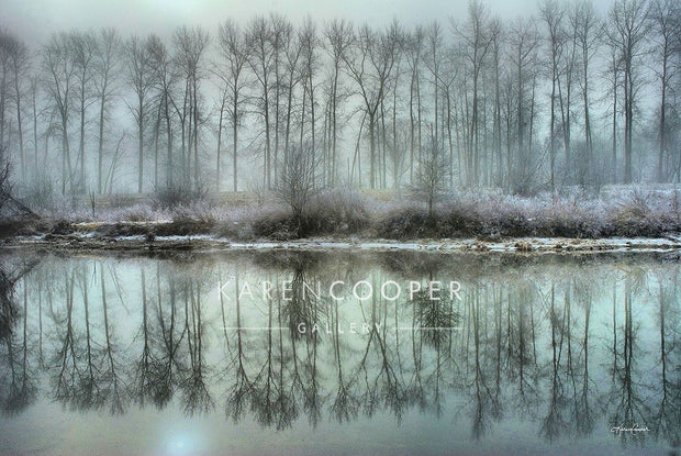 DeBoville Reflections by Karen Cooper Gallery in Vancouver