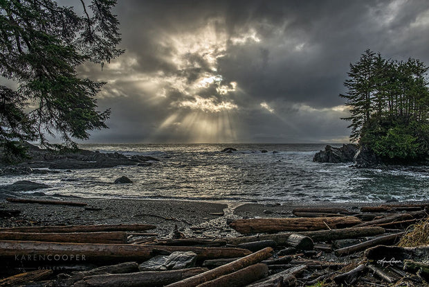 Large golden sun rays breaking through a dark stormy sky over a roaring ocean with medium waves coming toward the driftwood covered beach.
