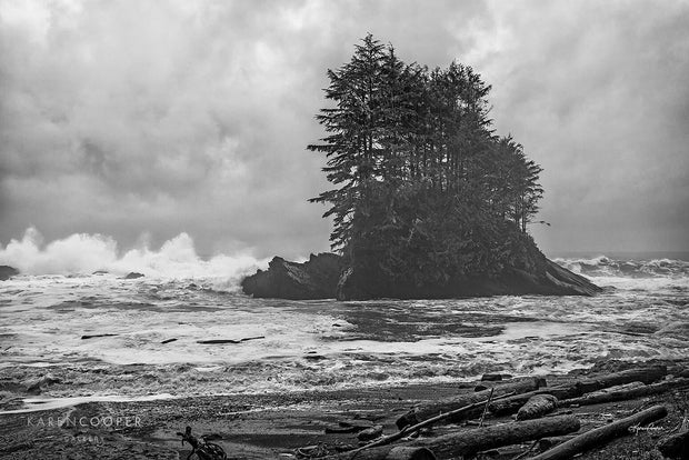 Black and white of a stormy seas, large waves crashing onto a small rocky island in the centre, covered in a few tall evergreen trees. Sandy shoreline in foreground covered in driftwood.