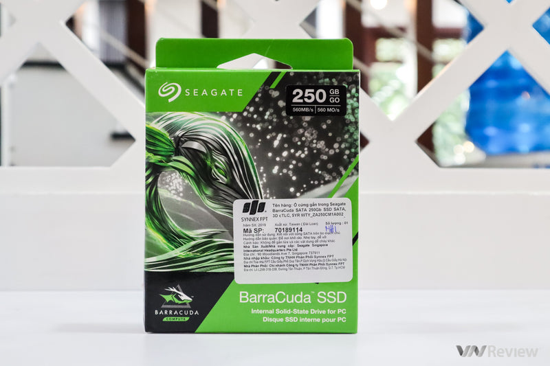 Disco Estado Solido Interno 250 GB Seagate BarraCuda
