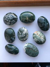 Load image into Gallery viewer, Moss Agate Palmstone