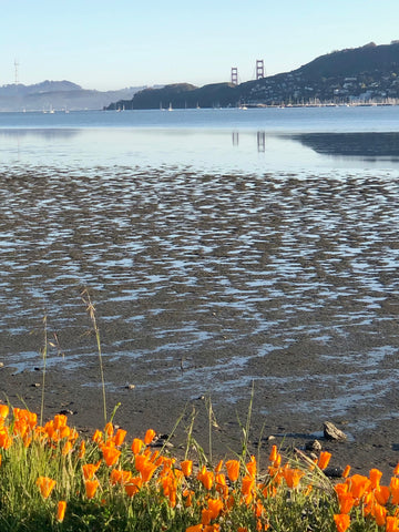 Golden Gate Bridge, Tiburon Peninsula