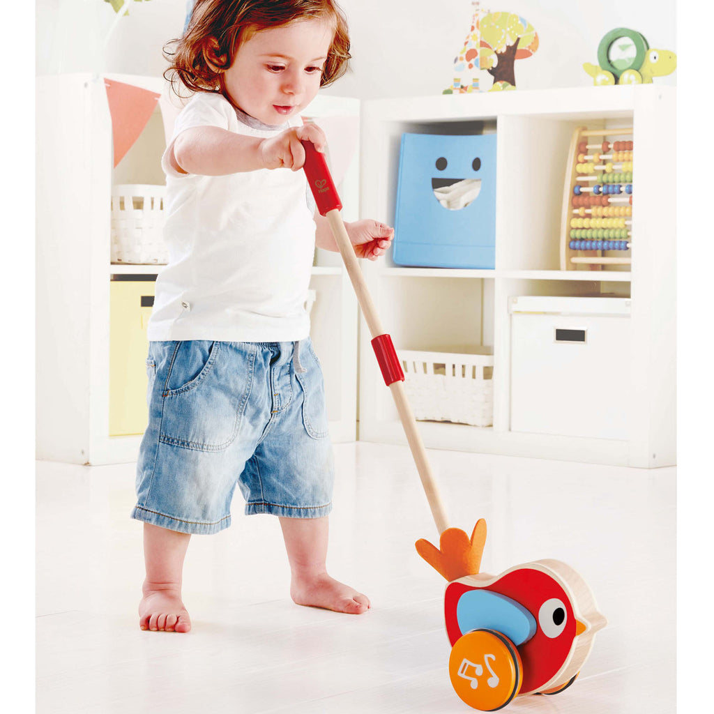 hape lilly musical push along bird