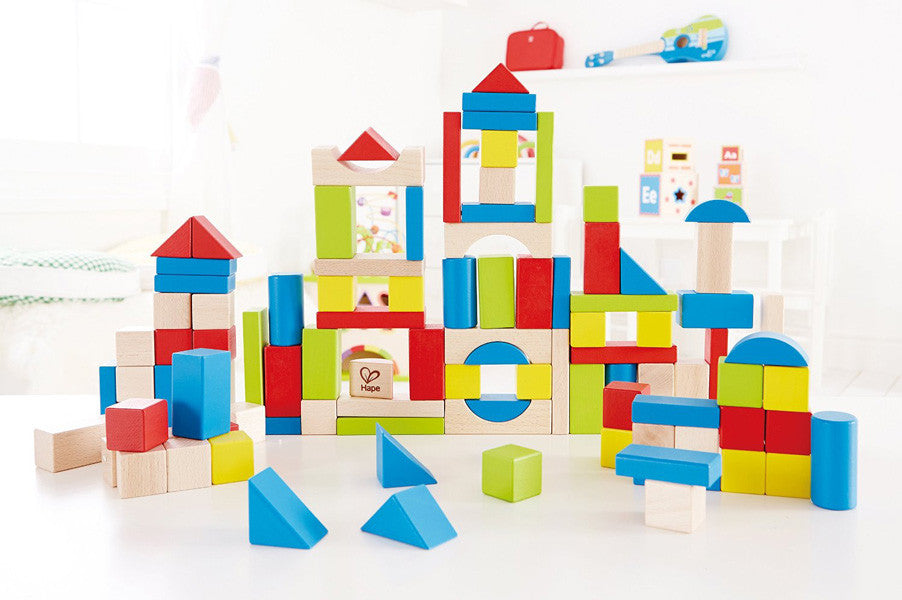 hape 100 piece beech blocks