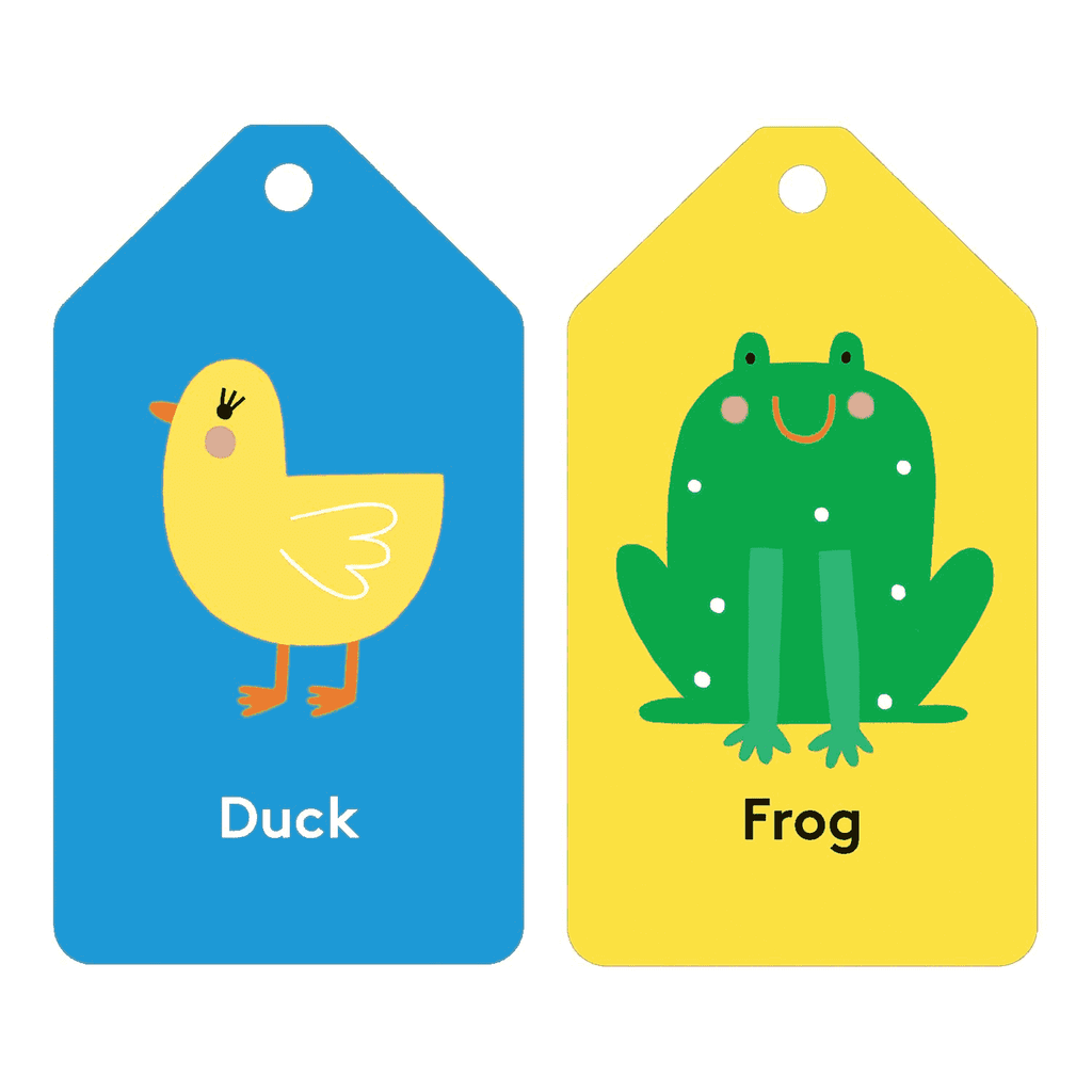 mudpuppy flash cards first words