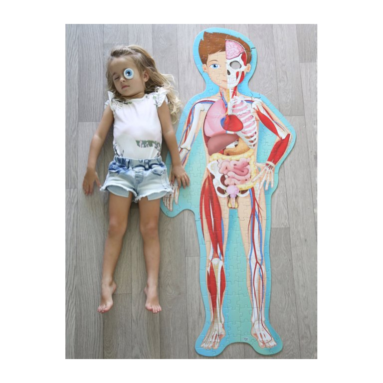 sassi puzzle & book set the human body 200 piece puzzle