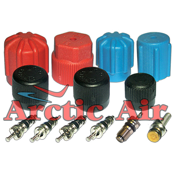 MT2903 AC Cap & Valve Kit for 1965-1993 Acura Audi BMW and Buick Vehicles