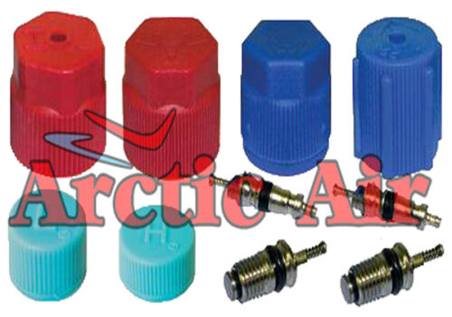 MT2909 Cap & Valve Kit for 1994-2013 Audi Buick Cadillac Chevy Ford Honda Vehicles