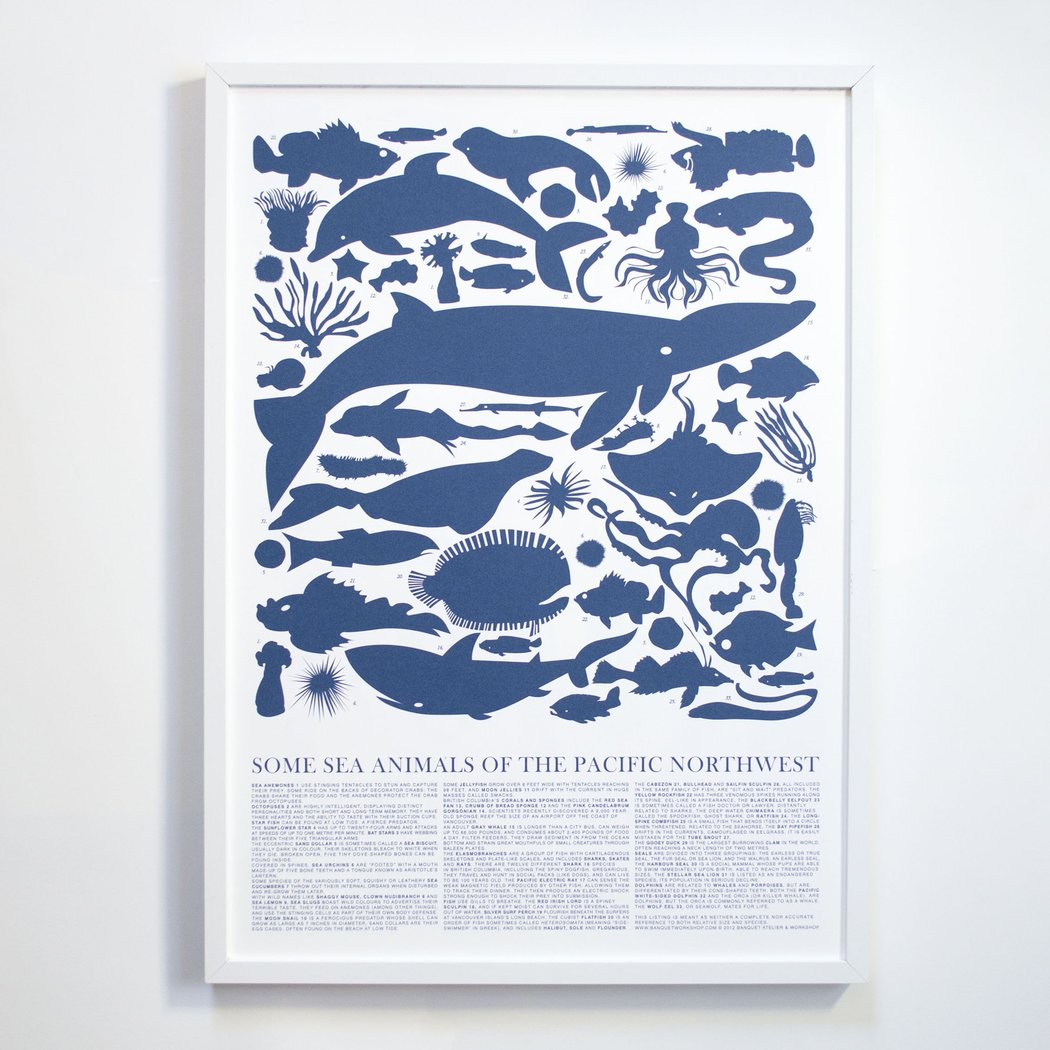 Banquet - Pacific Northwest Sea Animals Print 50 x 70 cm