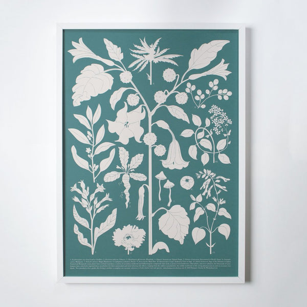 Banquet Workshop House Plants Silkscreen Art Print