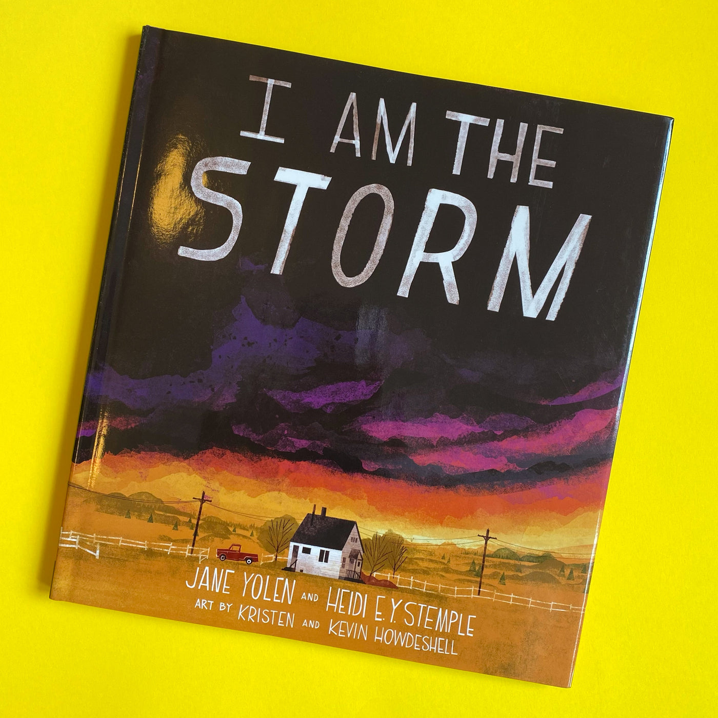 I Am the Storm by Jane Yolen and Heidi E. Y. Stemple