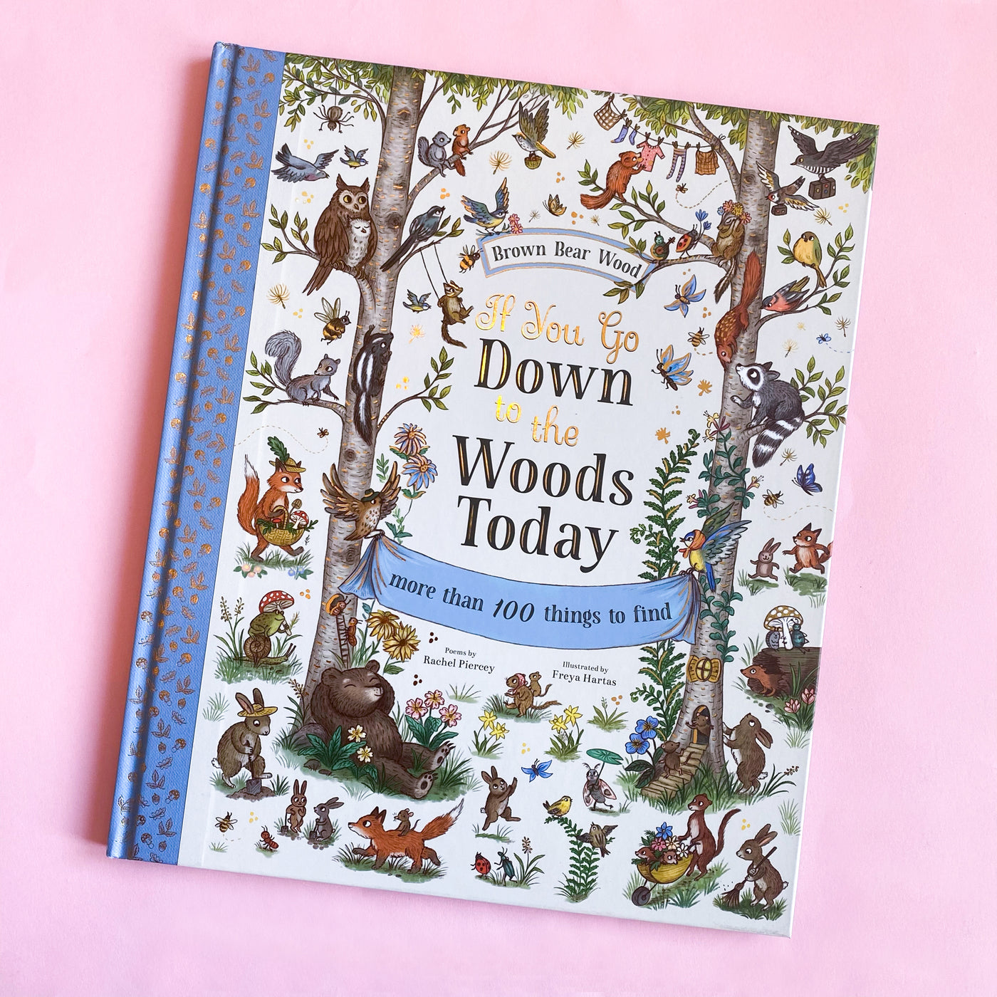 If You Go Down to The Woods Today by Rachel Piercey and Freya Hartas