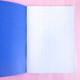 Main Lesson Books Graph Paper