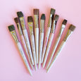Mercurius Kindergarten Paint Brushes