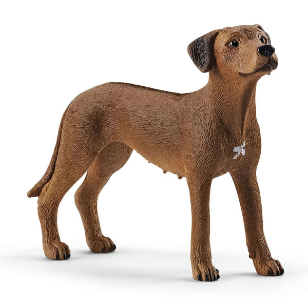 Schleich Farm World Rhodesian Ridgeback Toy Figurine
