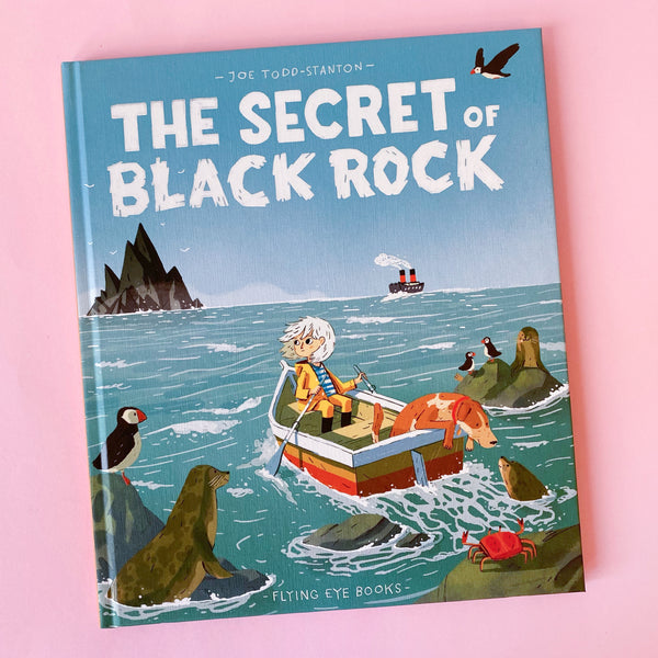 The Secret of Black Rock by Joe Todd-Stanton