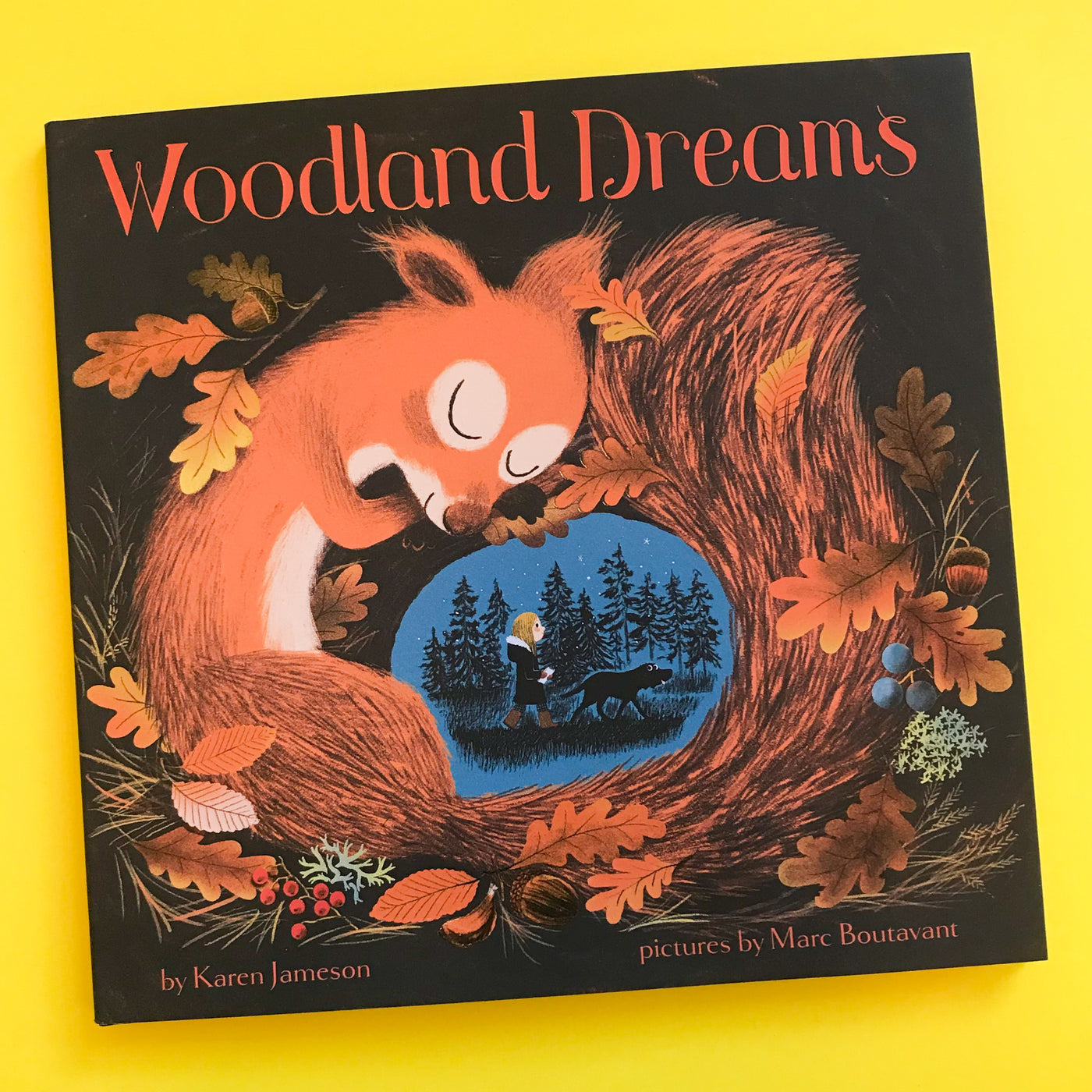 Woodland Dreams by Karen Jameson and Marc Boutavant