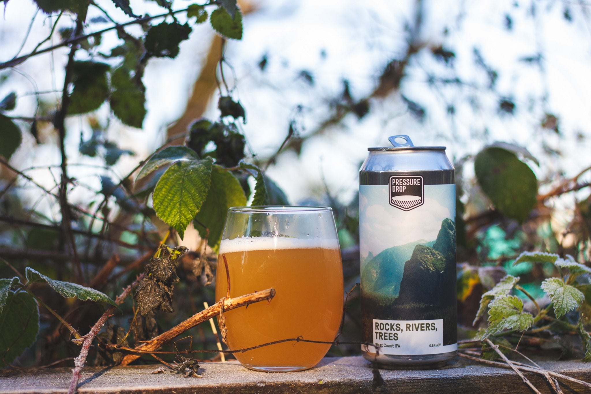 Rocks Rivers Trees - West Coast IPA - West Coast IPA