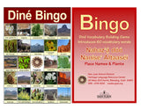 Dine Bingo: Places and Plants -  Nahaz'a doo Nanise' Altaasei