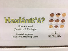 Haalanit'e - How Are You?  (Emotions & Feelings) Matching/Memory Game