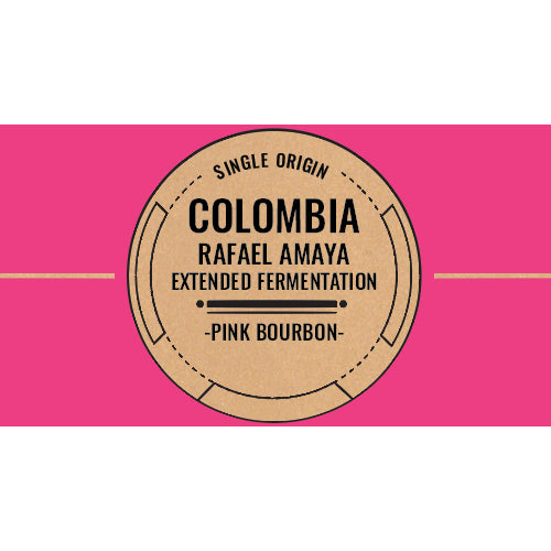 Micro Lot: Colombia: Rafael Amaya Extended Fermentation - Light / Filter Roast