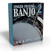 Banjo and Mandolin Vol. 2