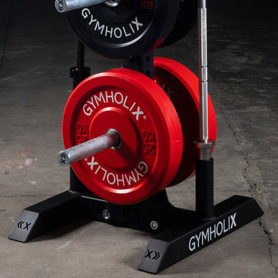 GYMHOLIX VERTICAL PLATE TREE