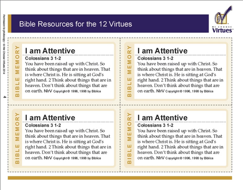 Bible Resources (60 pages) -PDF