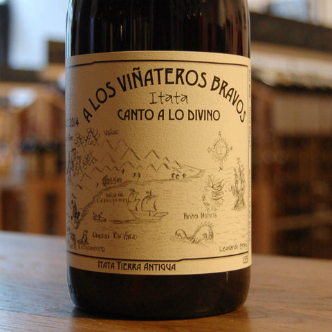 A Los Vinateros Bravos Canto a Lo Divino Cinsault - De Wine Spot | Curated Whiskey, Small-Batch Wines and Sakes