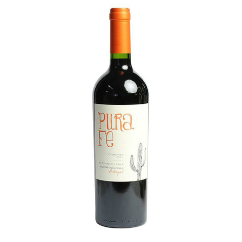 Antiyal Pura Fe Valle del Maipo Cabernet Sauvignon - De Wine Spot | Curated Whiskey, Small-Batch Wines and Sakes