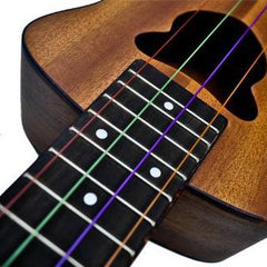 Ukulele and Folk Instrument