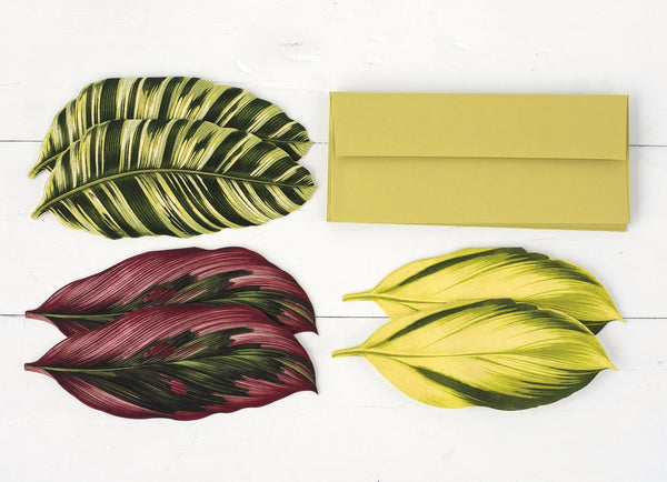 Tropical Leaves Boxed Notecard Set