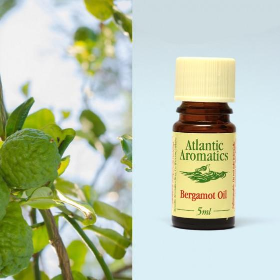 Atlantic Aromatics -Organic Bergamot 3x5ml