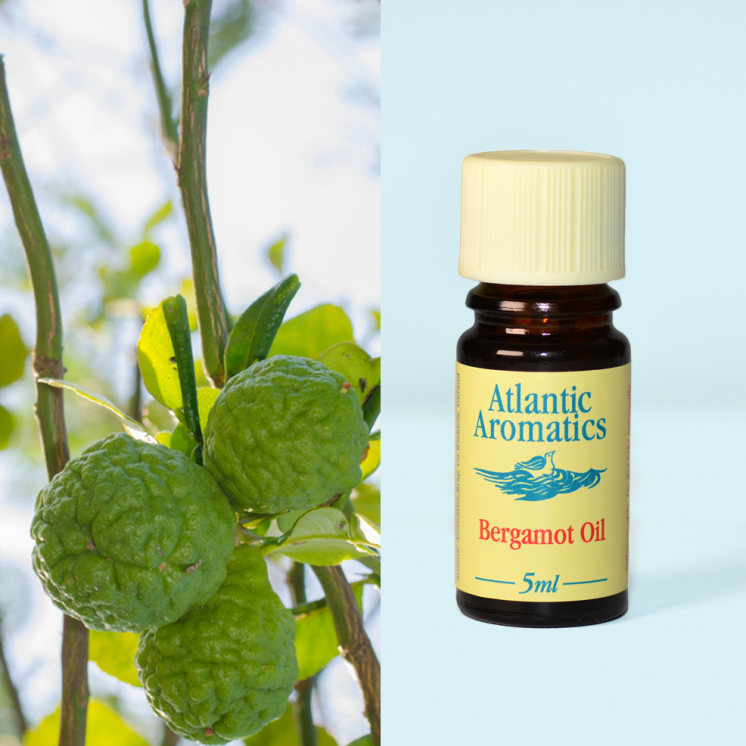 Atlantic Aromatics - Bergamot 3x5ml