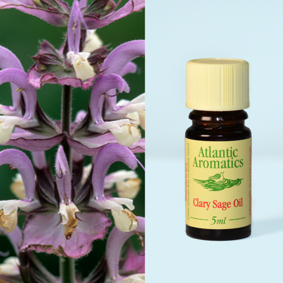Atlantic Aromatics - Clary Sage 3x5ml
