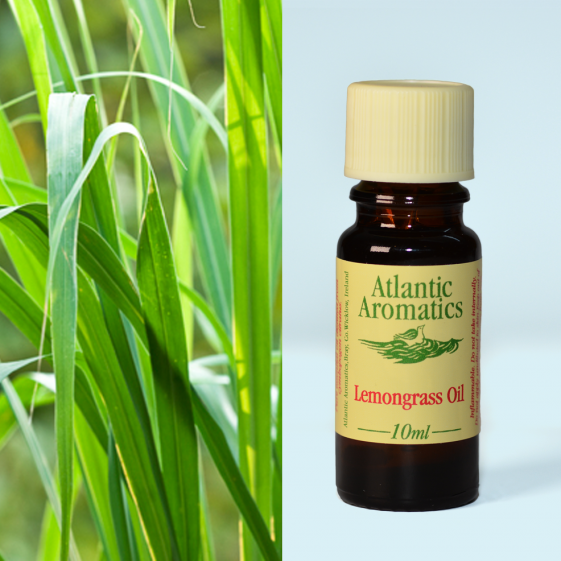Atlantic Aromatics	Lemongrass (Org)	10ml